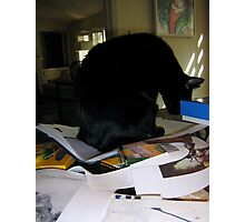 PhD Workspace 2 with Cat Photographic Print