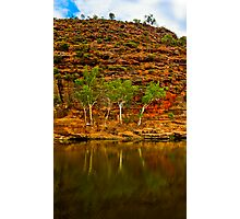Four Trees - Ross Graham Gorge in Kalbarri Photographic Print
