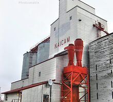 The grain elevator by Erykah36