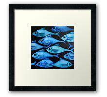 Blue Fish School Framed Print
