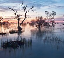 Memories of Menindee by Malcolm Katon