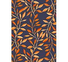 Autumn pattern Photographic Print