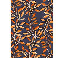 Autumn pattern Photographic Print