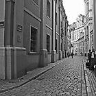 Poznan street scene 2 by BrianZvi