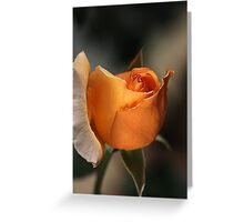 Orange Mood Greeting Card