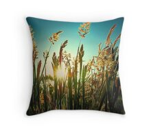 Golden moment.. Throw Pillow