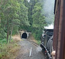 Tunnel Ahead! VintageSteam Train Ride, Coffs Harbour NSW by Adrian Paul