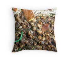 SPRING 4 - SEED Throw Pillow
