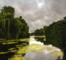 Coombe Abbey Lake by MartinMuir