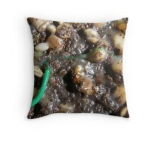 SPRING 5 - EARTH Throw Pillow