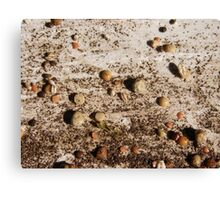 SPRING 13 - FUTURE LAND Canvas Print