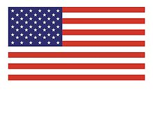 American Flag, Stars & Stripes, Pure & Simple, America, USA by TOM HILL - Designer