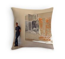 Rauschenberg Reflections (Pegasits) Throw Pillow