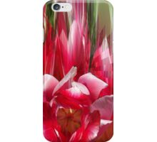 Tulips composition i phone 4 iPhone Case/Skin