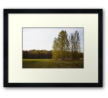 Latvian countryside Framed Print