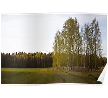 Latvian countryside Poster