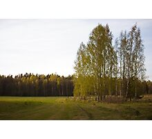 Latvian countryside Photographic Print