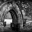 Carlisle Cathedral- The Grounds by Lou Wilson