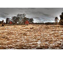 A farm scene Photographic Print