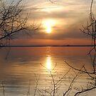 Framed Sunset by Sandra Fortier