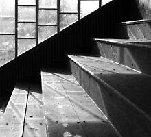 Pavilion Steps, Stadium, Peebles by rosie320d
