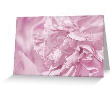 Peony In Pastel Pink Greeting Card