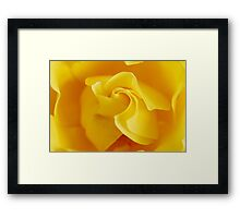 Yellow Precious Framed Print
