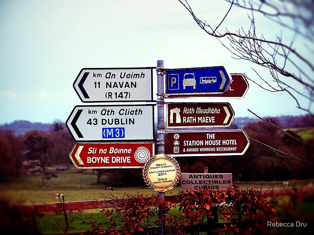 Which Way Do I Go? by Rebecca Dru