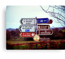 Which Way Do I Go? Canvas Print