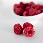 raspberries by tara romasanta