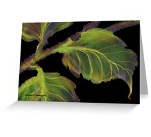 'Burnished Leaves' Greeting Card
