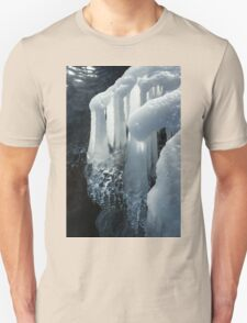Elegant Christmas Ornaments From Mother Nature T-Shirt