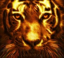 Infernal Tiger by ImageMonkey