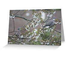 UNCOMMON BEAUTY Greeting Card