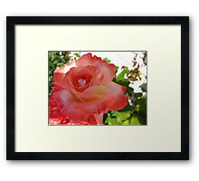 Magestic coral Framed Print