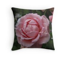 Old Fashioned Dream Throw Pillow