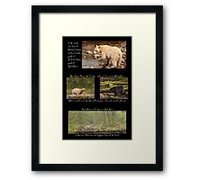 Legend of the Spirit Bear for Earth Day Framed Print