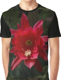 One Very Red Orchid Cactus Bloom - Delicate, Luminous and Elegant Graphic T-Shirt
