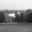Richmond Hill  by Jasna