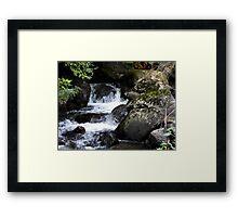 Taggerty Cascades Framed Print