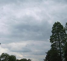 Cloudy Day  by dge357