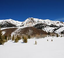 Winter View of the Boulder Mountains by Jennifer Hulbert-Hortman