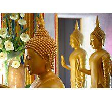 Buddhas Photographic Print
