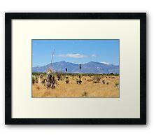 San Pedro Riparian Conservation area Framed Print