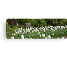 Sping Canvas Print