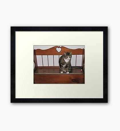 Love Bear Framed Print