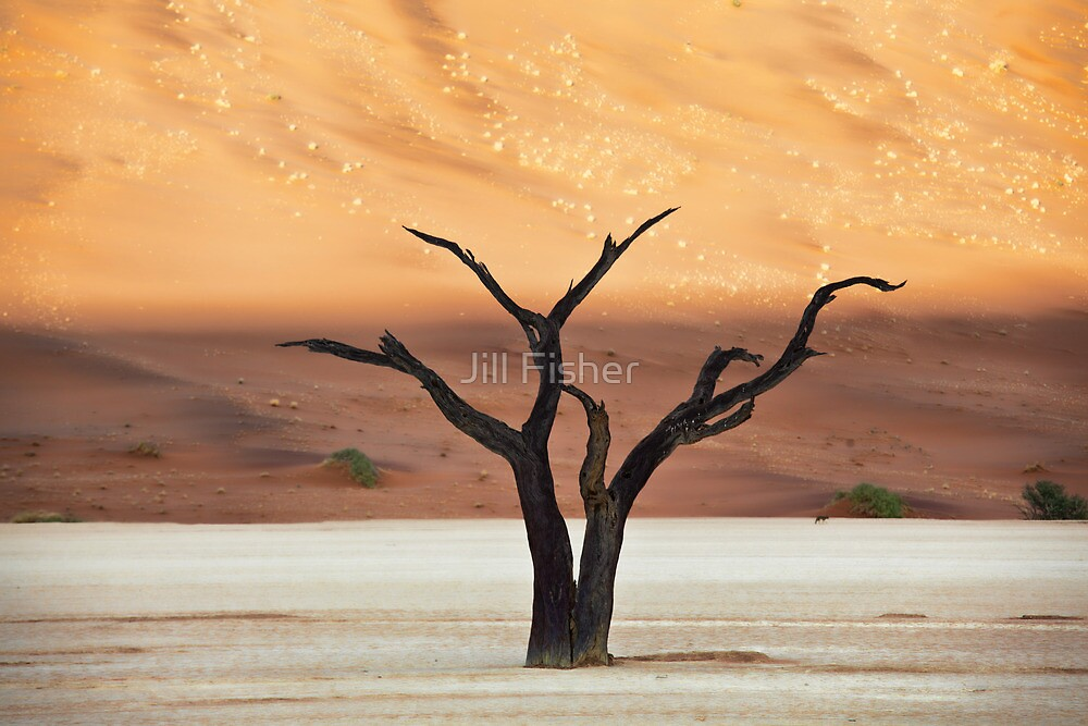Sculpted Tree by Jill Fisher