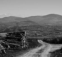 Blackstairs Mountains from Brandon Hill, County Kilkenny, Ireland by Andrew Jones