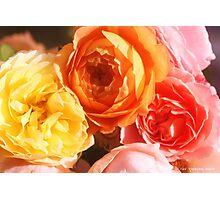 MIA FLORA 2 Photographic Print
