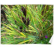 Wild stems Poster